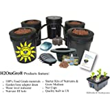 Hydroponic Recirculating Deep Water Culture System with Root Spa. (4) 5 Gallon Buckets + 1 Control by H2OToGro