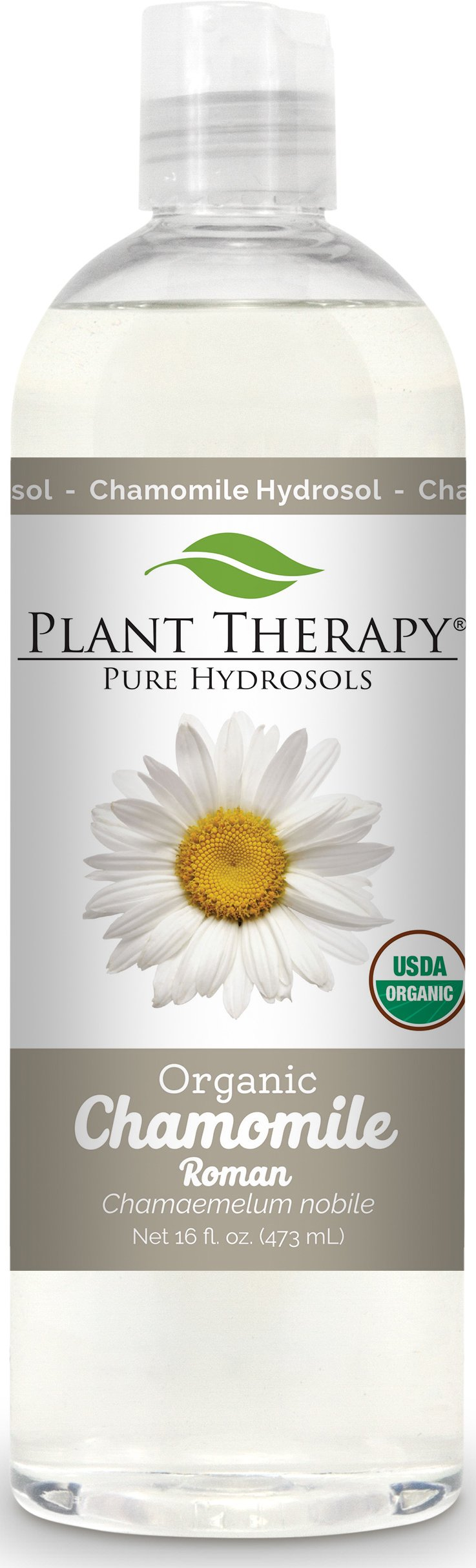 Plant Therapy Chamomile Roman Organic Hydrosol 16 oz By-Product of Essential Oils by Plant Therapy