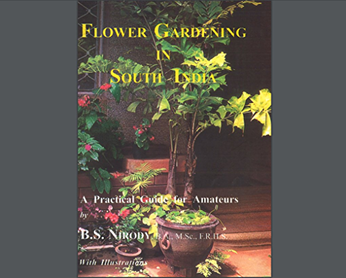 Flower Gardening in South India: A Practical Guide for Amateurs