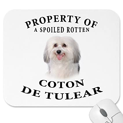 2418c5e736b33 Amazon.com : Coton de Tulear Mousepad Dog Mouse Pad