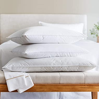Westin Feather & Down Pillow - Medium to Firm Support Feather and Down Pillow - Queen (20  x 30 )