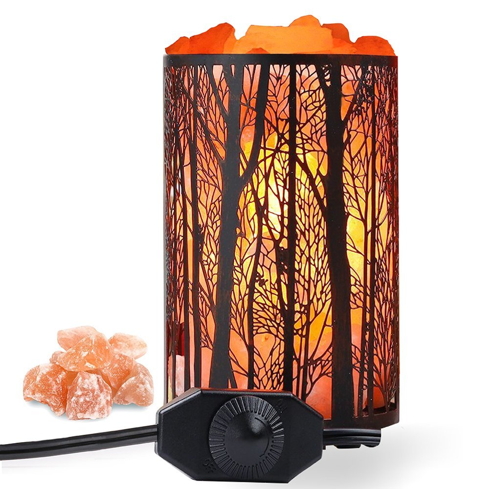 Himalayan Salt Lamp, Air Purifying Salt Rock Lamp Natural Night Light in Forest Design Metal Basket with Dimmer Switch (4.1 x 6.5