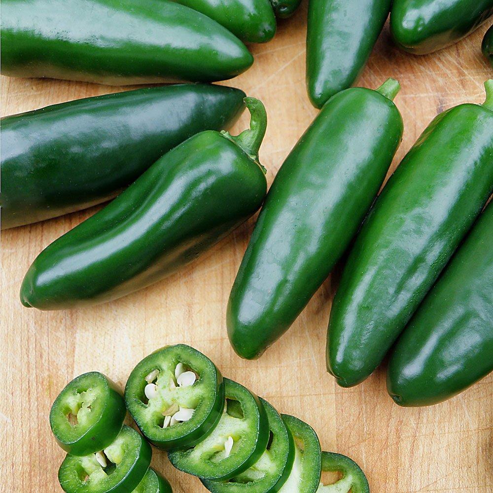 Bonnie Plants Jalapeno Hot Pepper Live Vegetable Plants - 4 Pack | Most Popular Chile Pepper | Non-GMO | 24 - 48 Inch Plants | 3 Inch Pepper Size by Bonnie Plants (Image #6)
