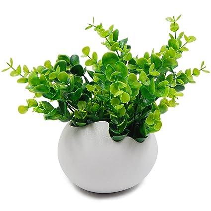 offidix flowerpot egg shape whiteblack ceramic plant pot flower planter white flower pots for