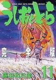 うしおととら 完全版 (11) (少年サンデーコミックススペシャル)