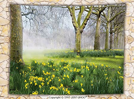 Iprint Nature Fleece Throw Blanket Spring Flowers In The English