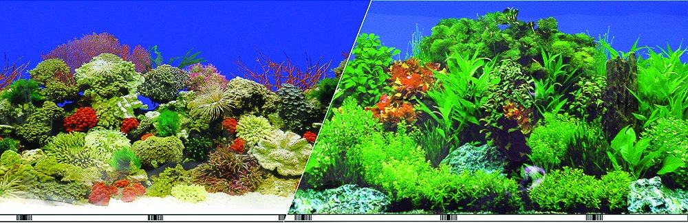 Blue Ribbon Pet Products ABLVSB1524 Decorative Reef Background for Aquarium, 24-Inch 50-Feet by Blue Ribbon