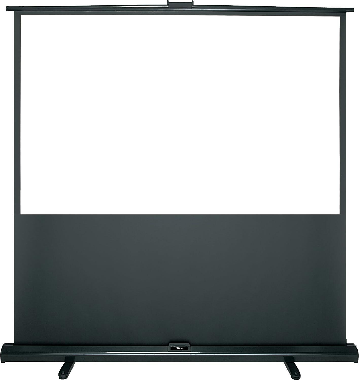 Optoma DP-1095MWL schermo per proiettore 2,41 m 16:10 95