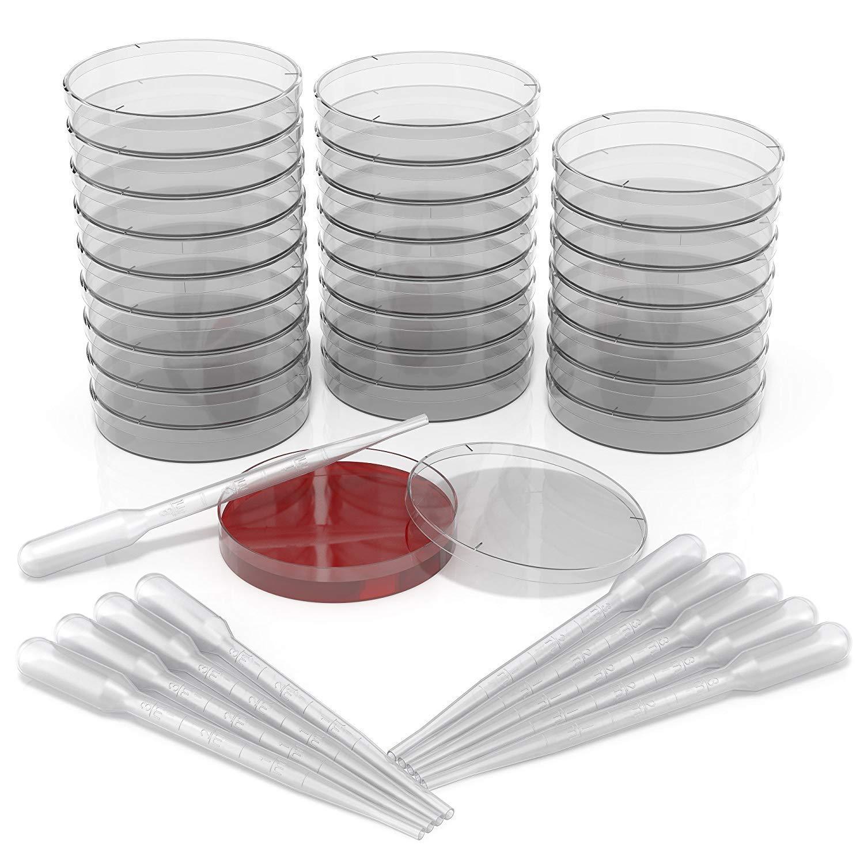 3 mm - Fornito Con 10 Pipette Di Trasferimento In Plastica Ventilate Confezione Da 25 Set Di Piastre Di Petri In Plastica Sterile Da 90 mm x 15 mm Con Coperchio