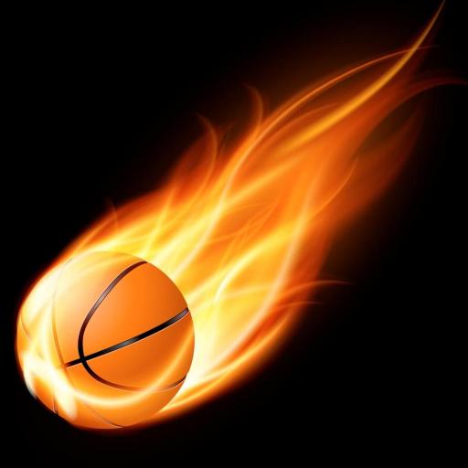 Basket Fidu Pro