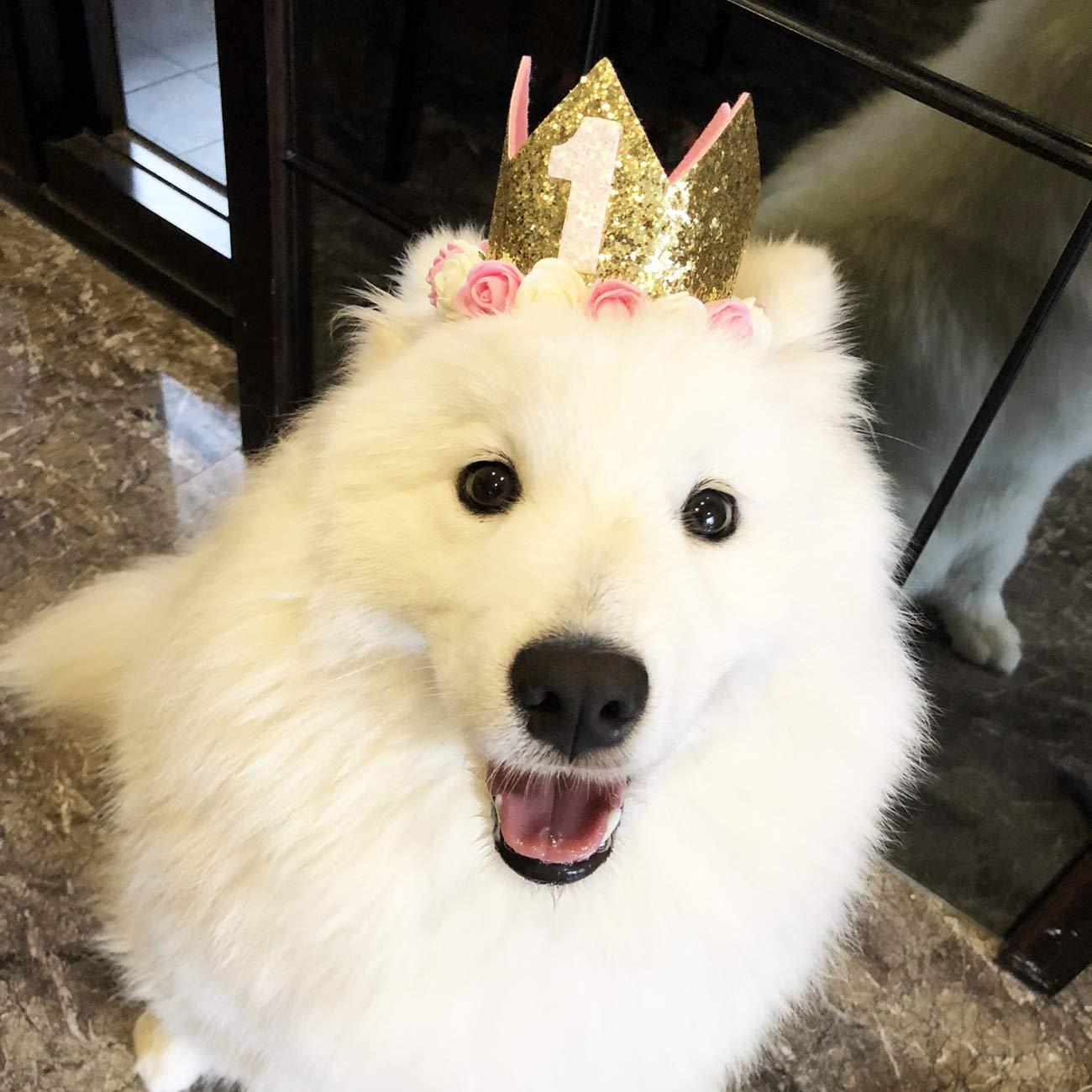 Legendog Dog Birthday Hat Cute Glitter Crown Flower Headwear 1 5 Figures