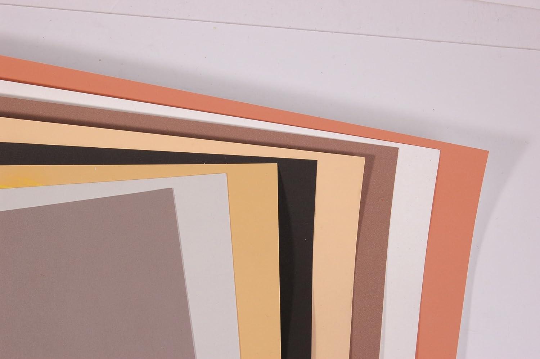 Clairefontaine 96011C 96011C 96011C Packung (mit 5 Zeichenbögen Pastelmat, 50 x 70 cm, 360 g, ideal für Trockentechniken und Pastell) braun B00ZG1LRUA | Zürich  cfece6