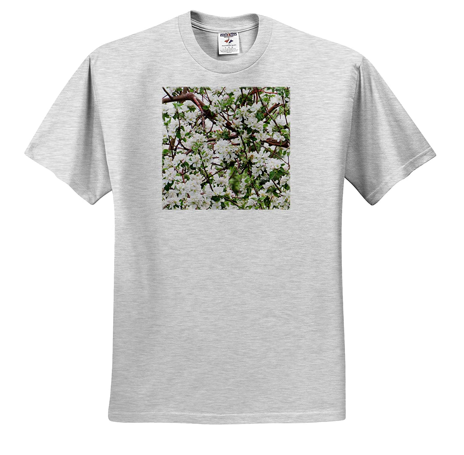 Blossom Popping on an Apricot Tree in Spring 3dRose Jos Fauxtographee T-Shirts Blossoms Popping