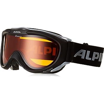 Eine hochwertige Skibrille wird von der Marke Alpina hergestellt.