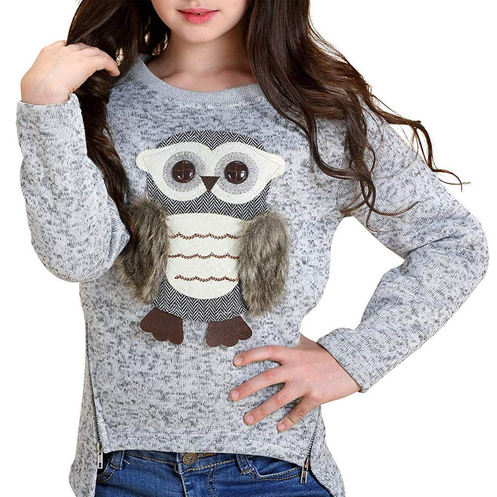 dumanfs Toddler Baby Boys Girls Long Sleeve Cartoon Owl Print Tops Zipper Pullover Tops Sweatshirt Clothes 6T-14T