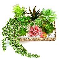 KUUQA 10 Pcs Unpotted Artificial Succulent Flowers Plants Faux Succulents for Home Decor Indoor Garden DIY