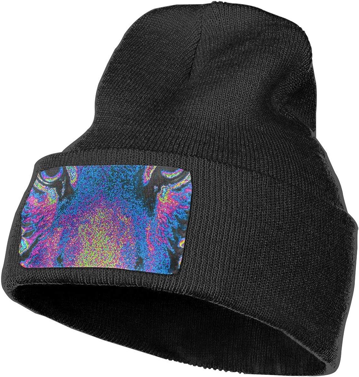 100/% Acrylic Acid Mas Beanie Hat Ruin Tiger Fashion Knitting Hat for Men Women