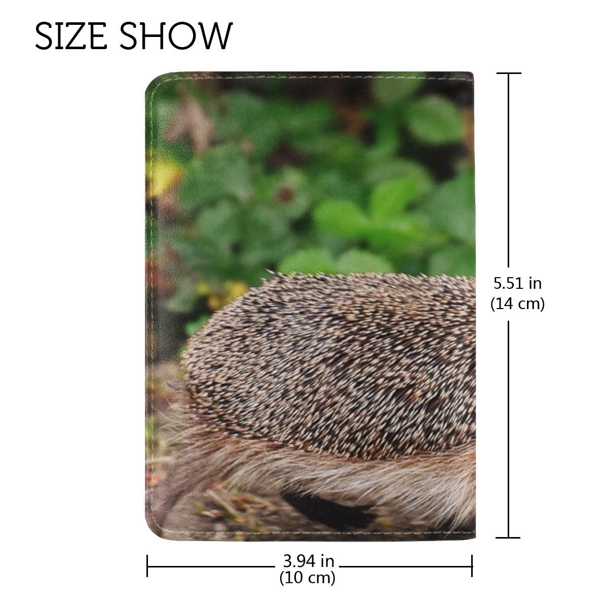 Hedgehog Moss Walk Thorns Leather Passport Holder Cover Case Travel One Pocket