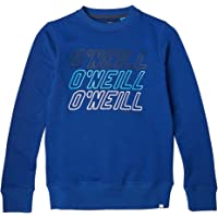 O'NEILL Lb All Year Crew Sweatshirt, Sudadera para Niños