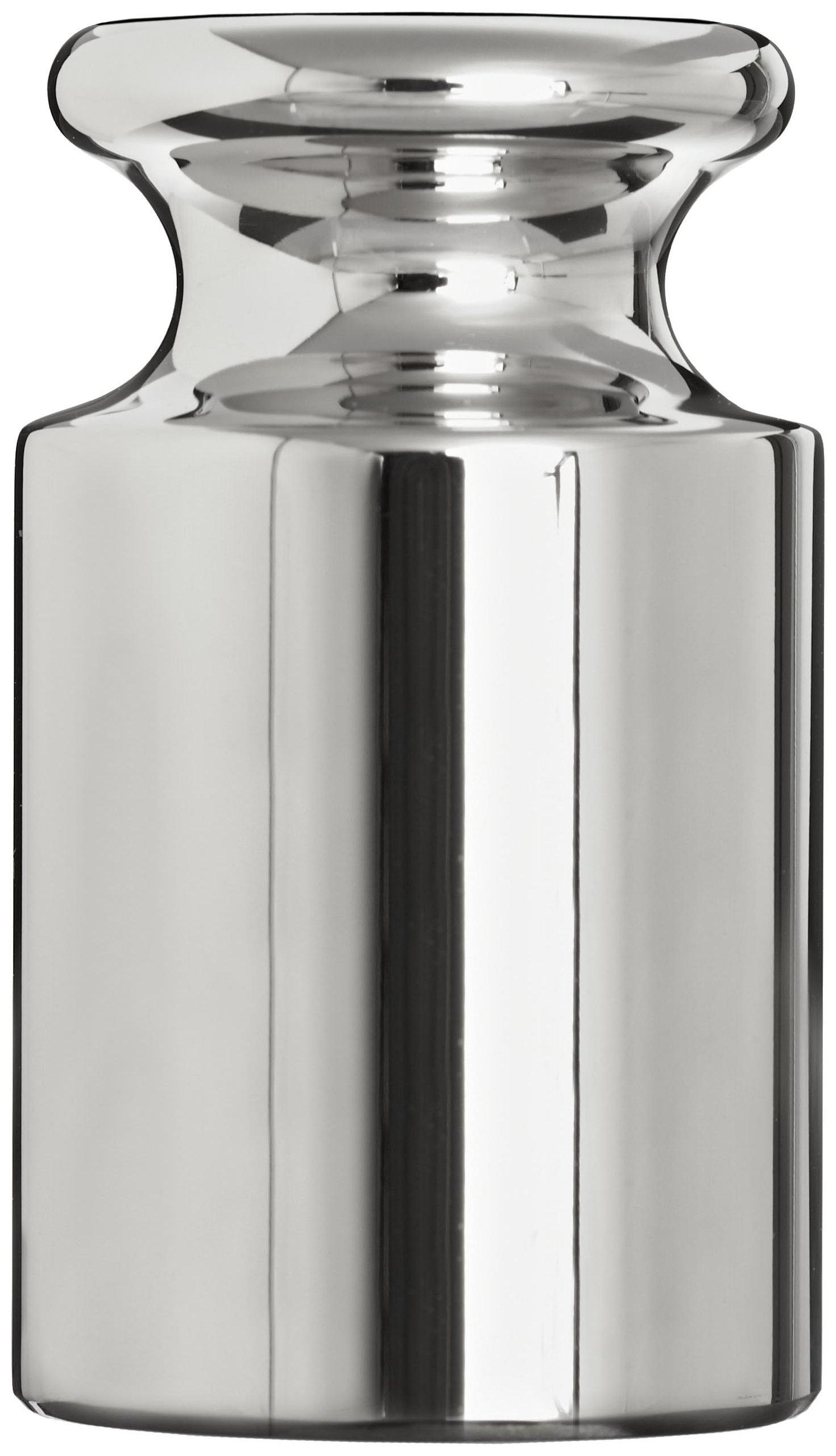 Adam Equipment 100g Stainless Steel ASTM Class 2 Calibration Weight