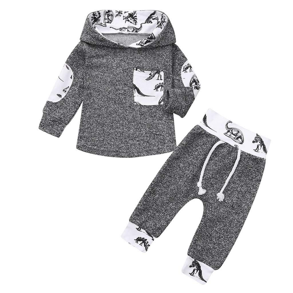 6645e1946 Amazon.com: Toddler Infant Baby Boys Dinosaur Long Sleeve Hoodie Tops  Sweatsuit Pants Outfit Set (Gray, 12-18 Months): Baby