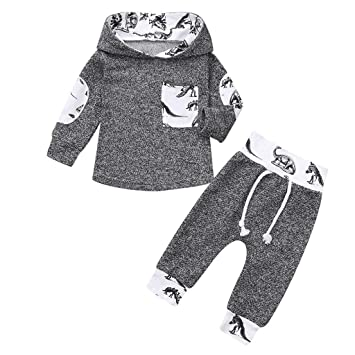 51e9efe65bf22 Image Unavailable. Image not available for. Color: Toddler Infant Baby Boys  Dinosaur Long Sleeve Hoodie Tops Sweatsuit Pants Outfit Set ...