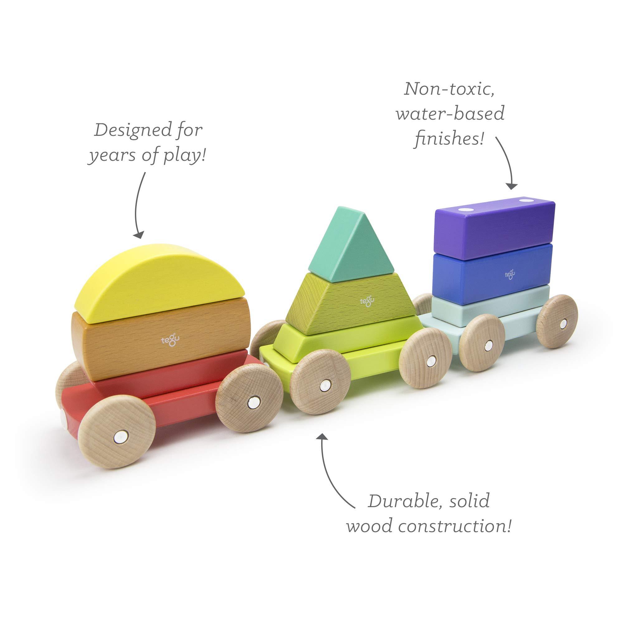 Tegu 9 Piece Magnetic Shape Train Building Block Set, Rainbow