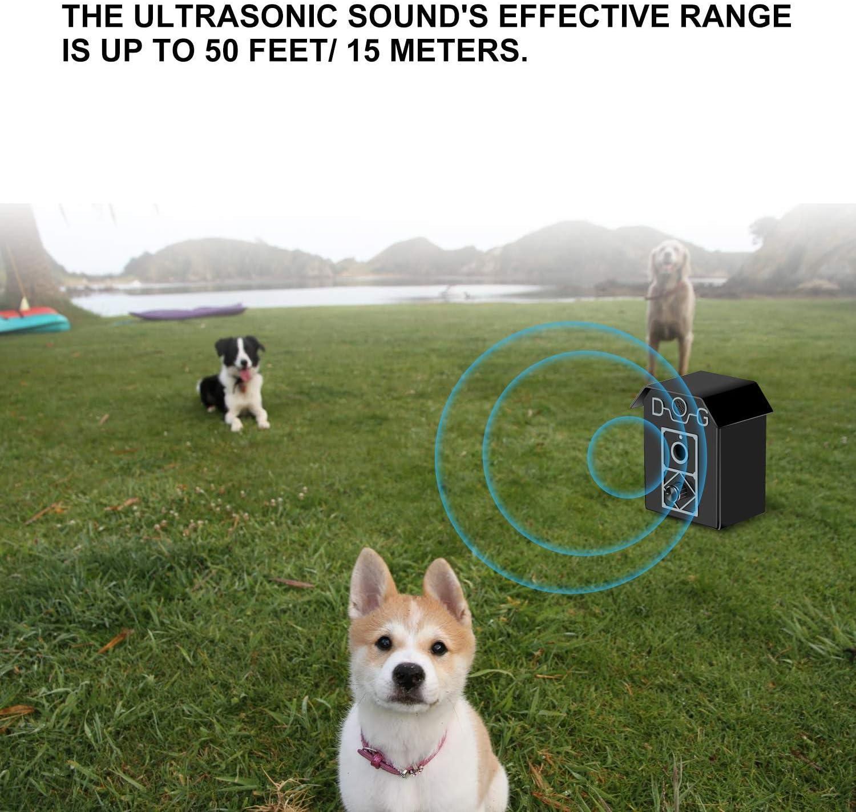 KENSONS for dogs Show Cuerda Expositor//–/Cuerda de Color marr/ón Oscuro, 4/mm x 165/cm//–/vorf/ühr Cuerda