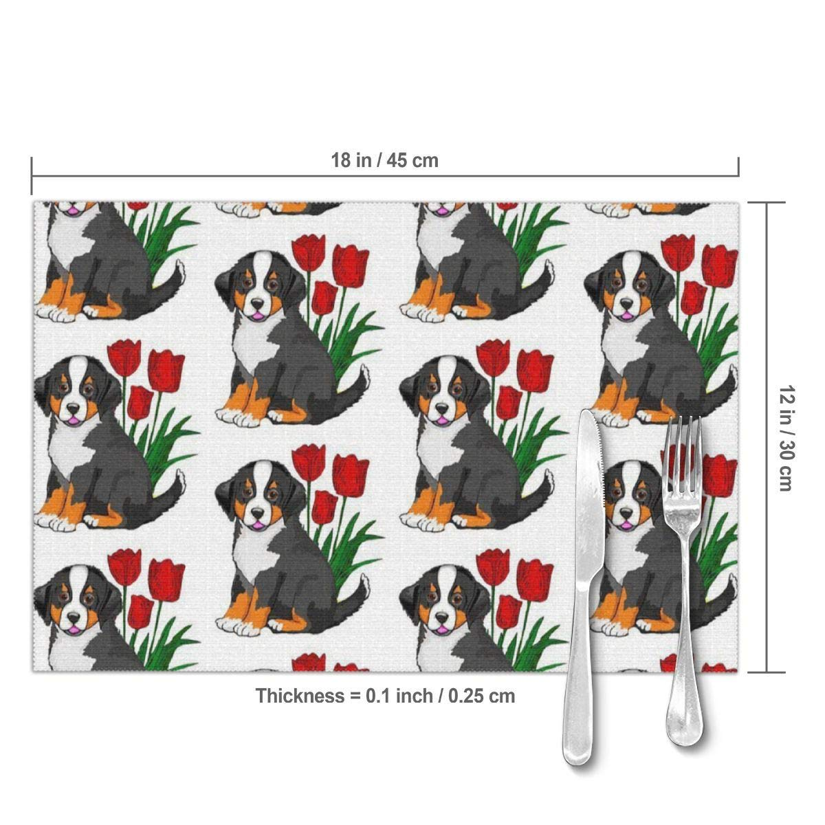 Amazoncom Bernese Mountain Dog Placemats Plate Mats For