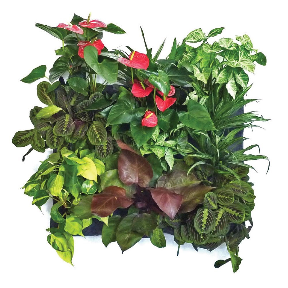 Florafelt 12-pocket Vertical Garden Planter by Florafelt (Image #5)