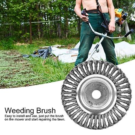 8 Cepillos de Limpieza de malezas Cepillo de eliminación ...
