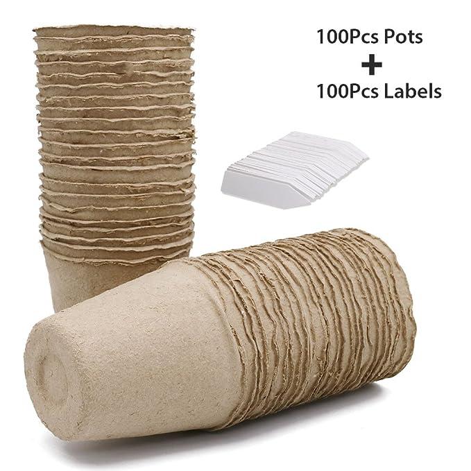 100 macetas Pequeñas (8 cm) de fibra Biodegradables para Semillas, con 100 Etiquetas de Plástico para Plantas, Blanco, 1 x 5 cm