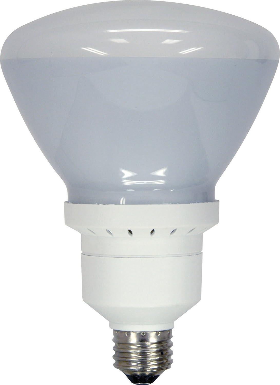 GE Lighting 60314 Energy Smart Bright from the Start CFL 26-watt, 1300-lumen R40 Indoor Flood Light Bulb with Medium Base