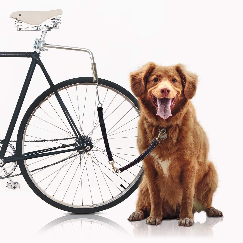 Bella & Balu Correa Perro para Bicicletas | Correa para bicicleta incl. Fijación para el sillín, espaciador, muelle de bobina, correa, reflectores y guía corta – Para un ciclismo seguro con su per