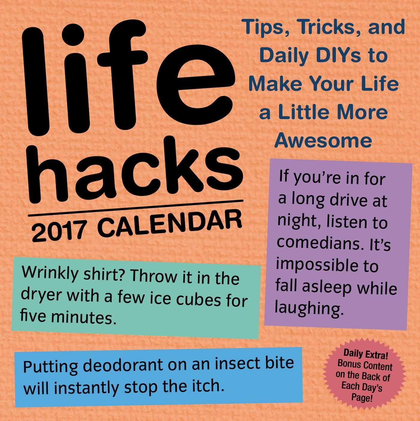 Life Hacks 2017 Day Calendar product image
