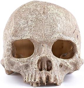 Carefree Fish Halloween Skull Statue Aquarium Head Decoration Skeleton Decor Pet Reptile House Desk Ornament