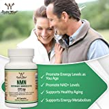 NMN Stabilized Form, 250mg Per Serving
