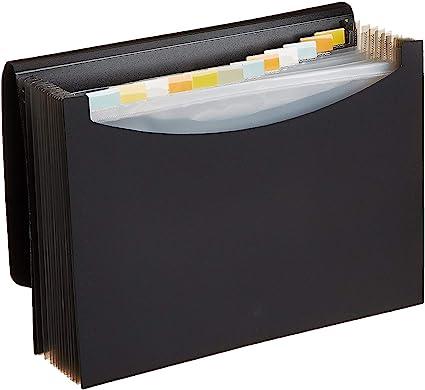AmazonBasics - Carpeta de acordeón (tamaño A4): Amazon.es: Oficina y papelería
