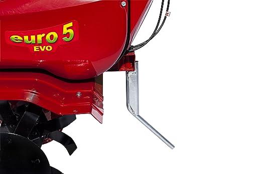 Motoazada Eurosystems Mod.Euro 5 Evo Motor a Scoppio Honda GP 160 ...