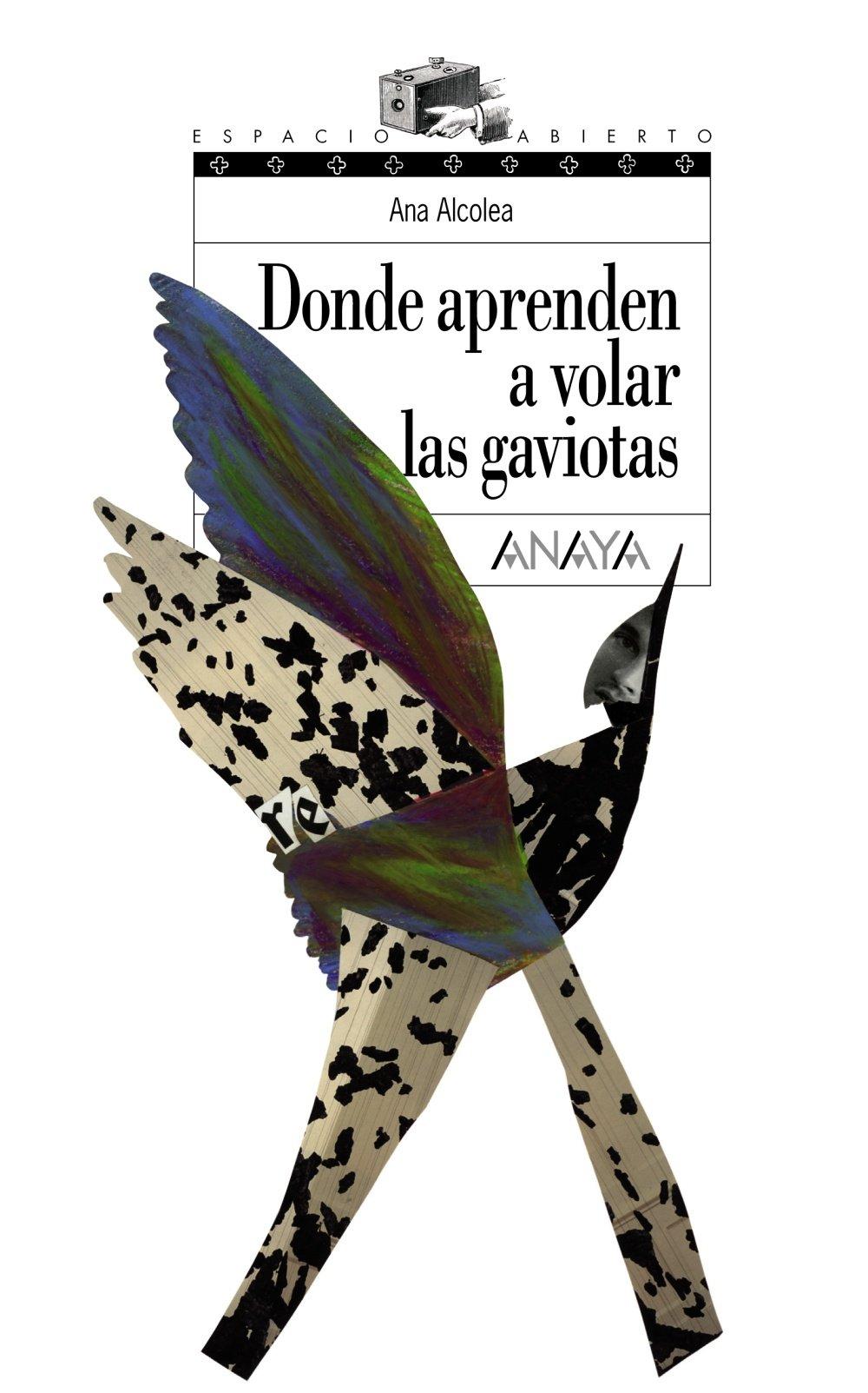 Donde Aprenden A Volar Las Gaviotas Literatura Juvenil A Partir De 12 Años Espacio Abierto Spanish Edition 9788466762489 Alcolea Ana Books