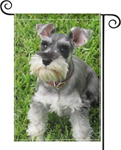 """PRUNUS Miniature Schnauzer Garden Flag, Vertical Double Sided Premium Material Holiday Weather Resistant Decorative Lawn Flags Outdoor Decor 18"""" x 12.5"""" Black"""