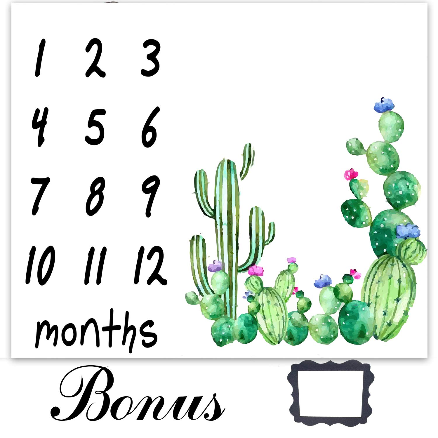 EARVO 47x40 inches Cactus Baby Photography Blanket, Newborn Monthly Milestone Blanket, Memory Blanket for New Moms Growing Infants 0-12 Months, Baby Boy Girl Shower Blanket EADS473