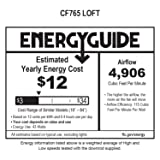 Emerson CF765BS Ceiling Fan with 4 Speed Wall