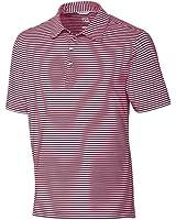 Cutter & Buck Men's Moisture Wicking, 50+ Upf Division Stripe Polo Shirt