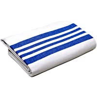 Luxury Flannel Blanket, Soft, Cozy, Comfortable Heavy Napping/Sleeping Bed Blanket, Lightweight (White Blue Stripe) Raymond Clarke