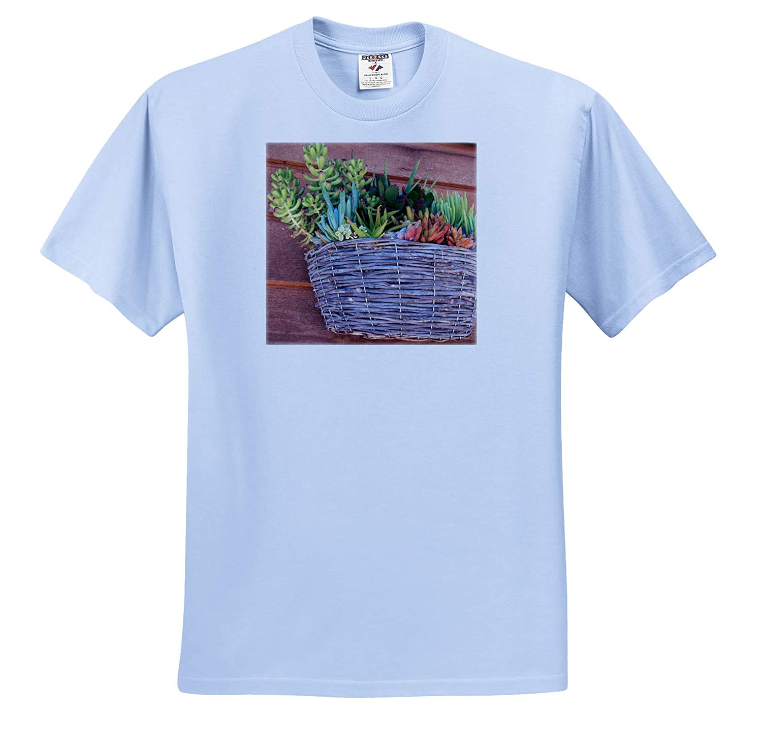 3dRose Jos Fauxtographee Suculents in a Basket Hung to The Wall T-Shirts Suculents on Wall in Basket