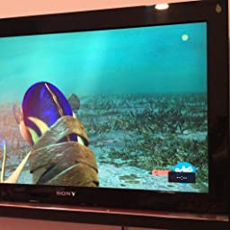 deleyCON Universal TV & Monitor Montaje en Pared de 23