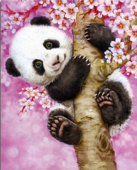 Full Special Shaped Drill Embroidery Arts Craft Mosaic Making Supplies Paint with Diamonds for Home Wall Decor Cute Panda 8X10 inches ZSNUOK 5D DIY Diamond Painting by Number Kits for Adults or Kids