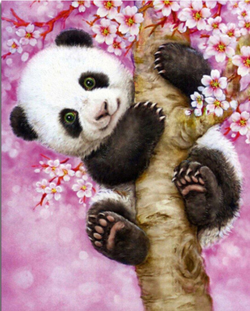 5D Pintura por Diamantes (ITM26890) oso panda 10x12