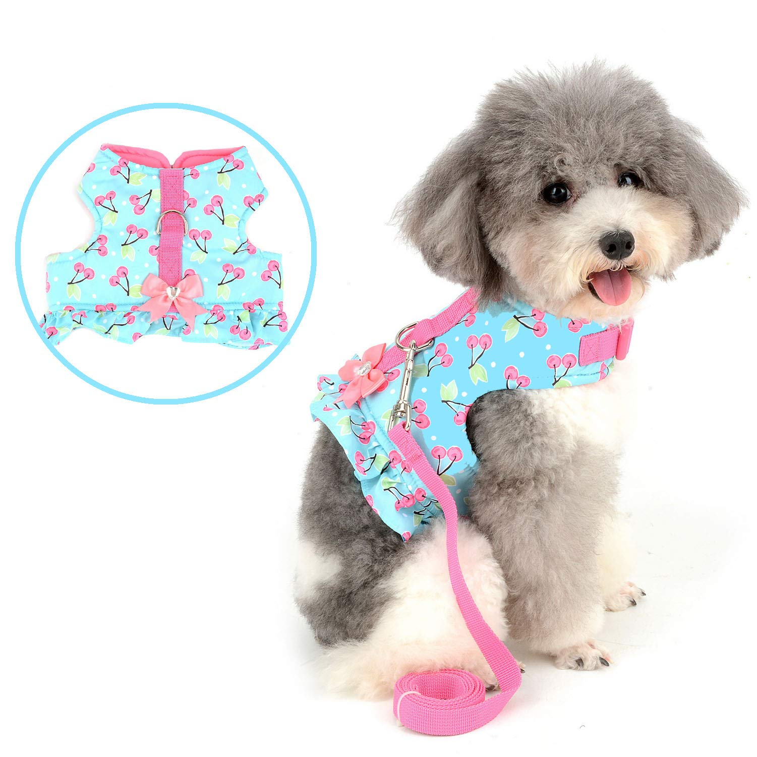 Zunea No Pull Small Dog Girl Harness Dress Escape Proof Cat Kitten Vest Harness Leash Set Step-in Soft Cotton Padded Cherry Printed Jacket Chihuahua Puppy Clothes with Bow for Walking Blue XS by Zunea